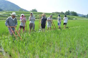 綾部里山交流大学は今月の「ローカル社会起業学科」の講座から「特待生」制度を設ける