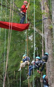 緑の少年団平成25年度中丹ブロック交流会で、樹木観察、ツリークライミング、木材市場見学が行われた。