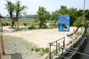 今年で4回目の井倉町自治会の「ほたるまつり」が7日から13日まで開催される。会場は今春整備したほたる公園で。