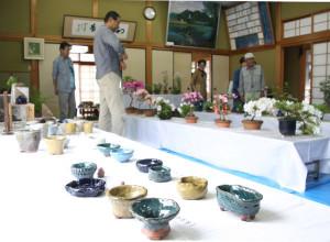 綾中町盆栽会は8日、コケ玉など約60点を持ちより、「初夏の山野草展」を開いた。