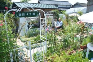 80種120本のバラが植えられた「バラ園」が物部町の丸田さん宅に完成。一般に開放し来場者を歓迎している。
