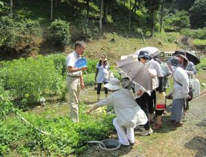 市シルバー人材センターは21日、睦寄町のあやべ温泉で薬草教室を開いた。