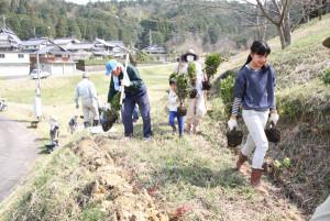 大畠町自治会(大槻和夫会長、40世帯)が、通称「桜山」として親しむ地元の小高い山を、ツツジの名所に変えようと計画している。22日には待ちに待ったツツジの苗木600本が手元に届き、全住民に呼びかけて半日がかりで植栽に励んだ。