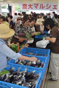 位田町の府立農業大学校(河村能夫校長)で24日、「農大マルシェ」が開かれ、訪れた人たちが野菜の収獲体験や夏野菜、花、茶などを買い求めてイベントを楽しんだ。