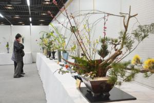 華道家元池坊綾部支部(梅垣知子支部長)は12と13の両日、綾中町のアスパAホールで「花の力 人の心に」をテーマにした花展(市・市教委・市文化協会・あやべ市民新聞社後援、池坊華道会協賛)を開いた。