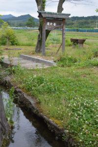 井倉町自治会(安村昇会長、245世帯)が町内の住宅地の一角に造った「ほたる公園」で29日から6月5日まで、今年で5回目となるホタル観賞会(実行委員会主催)が催される。同公園付近では数日前からホタルが飛び交っているそうだ。