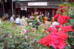 「綾姫バラ園」で5月28日、4回目となる「綾姫バラ祭り」が催され、花の観賞には最適な薄曇りの天候の中、バラを愛する多くの人が訪れて花をめでるとともに、ステージ発表や飲食物の模擬店などを楽しんだ。