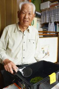 広瀬町の廣瀬修さん(82)は6月初旬から、黒色のプラスチックケースの中で昆虫(ホタル)を飼育している。