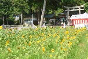 高倉神社「土用の丑祭」