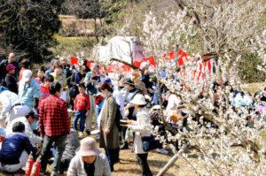 ポカポカ陽気に恵まれた第20回「和木町梅まつり」(同町農林業振興組合主催)は和木町の松原梅林で12日に催され、多くの人出でにぎわった。