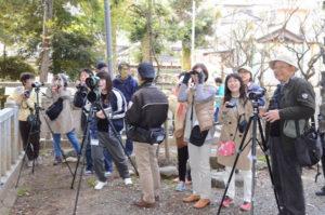 平成20年から綾部市の鳥「イカル」を探す共同キャンペーンを始めた市天文館パオとエフエムあやべ(FMいかる)。今年で10年目となるこの取り組みの一環として、13日には市民に参加を呼びかけた「イカル発見ツアー」と名づけた催しを宮代町の綾部八幡宮周辺で開いた。