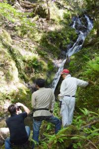 手を加えれば魅力ある場所になる地域の「宝」を〝磨こう〟―と、口上林地区自治会連合会(川端勇夫会長)では、十倉志茂町にある「不動の滝」に着目。自然景観が良い上、集落から容易に行ける場所であるため、観光スポットとして整備する取り組みを進めている。4日には同地区8自治会の会長らが現地を視察し、宝の生かし方について考え合った。