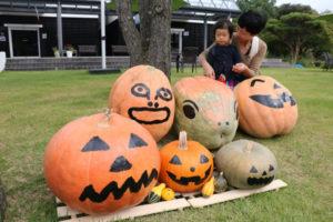 10月末のハロウィーンが近づく中、青野町のグンゼ博物苑内の芝生広場に5日から、ユーモアあふれる「おばけかぼちゃ」が登場した。「ハロウィーンかぼちゃ総選挙」と題した投票企画もあり、応募者全員に粗品が贈られる。30日まで。
