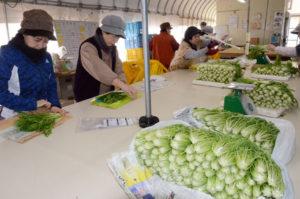 女性の活躍推進に取り組み、経営上の成果が表れている農業経営体を日本農業法人協会が選定する「農業の未来をつくる女性活躍経営体100選(WAP100)」に、施設野菜を栽培する第3セクター会社「農夢」(四方勝一社長)が選ばれた。今年度は全国で42経営体が選定されたが、府内では農夢のみ。3月6日に東京都渋谷区内で表彰式がある。