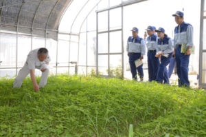 綾部にも大きな爪痕を残した西日本豪雨だが、そのうちの一つに農業被害がある。市災害対策本部が24日午前11時現在でまとめた農業関係の被害は、法面崩壊などの農地が307件、農道やため池、農業用水路といった農業用施設は381件、冠水などによる農作物被害も67件に上った。24日には府議会の農商工労働常任委員会に所属する12人の府議が、舘町で施設野菜を栽培する第3セクター会社「農夢」(四方勝一社長)を訪れ、被害の状況を確認した。