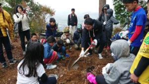 四尾山(標高287・3㍍)の山頂にヤマザクラを植樹する綾部青年会議所(綾部JC、四方章博理事長)の「四尾山アカデミア~サクラが繋(つな)ぐ人と自然~」と題した植樹イベントが17日に開かれ、子どもから70代までの市民ら69人の手によって、山頂に30本の苗木が植えられた。