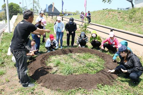 青野町に登記上の本社を置くグンゼ(廣地厚社長)が今年、あやべグンゼスクエア(同町)の開設5周年を記念し「あやべひまわりんピック2019」と題したイベントに取り組む。これは同スクエアを含む市内5カ所で直径2・5㍍の円形にヒマワリを咲かせ、収穫した種を福島県へ送るというもの。25日には協力施設の一つである鍛治屋町の市里山交流研修センターでグンゼ社員らが種まきを行った。