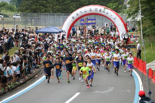 「あやべ二王門登山レース」(市、市スポーツ協会主催)が2日、睦寄町の市二王公園を発着点として開かれ、小学生から81歳までの797人が、2㌔から10㌔までの各コースに挑んだ。