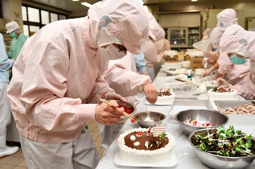 クリスマスまであと1週間となり、川糸町の綾部高校由良川キャンパス(東分校)では生徒たちがクリスマスケーキ作りに追われている。今年は480個を製造し、作業は19日まで続く。