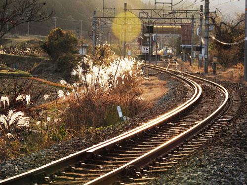 冬日に照らされ、JR山家駅が普段と違う顔を見せてくれた。夕方、雲の隙間から光が差し込み、レールが黄金色に輝く。駅の佇まいには「昭和レトロ」が感じられ、そこはかとなく郷愁を感じる。