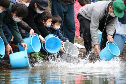 約4万匹の稚魚たちが元気に由良川に旅立っていった。「由良川にサケよ帰れ!」を合言葉に活動している由良川サケ環境保全実行委員会(佐々木幹夫会長)のサケ放流事業が8日、青野町の由良川花庭園であり、市民らが受精卵の段階から愛情を注いで育ててきた稚魚が、今年も由良川に放たれた。