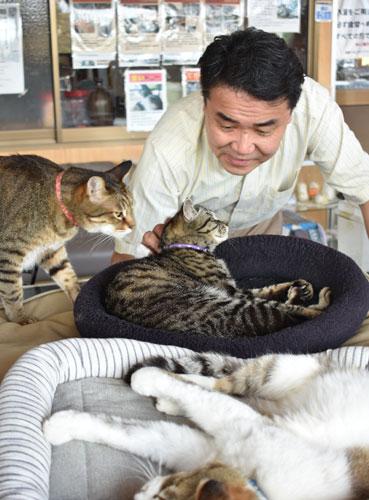 〝捨て猫〟の問題は今に始まったことではない。最近も市街地に住む70代の男性から本社に、捨て猫・野良猫のことで困っているという声が寄せられた。以前から夜間に自宅付近で捨て猫の行為があるという。猫の発情期には深夜に鳴き声がやかましい上、子猫も生まれており、野良猫が空き家を住処(すみか)にしているそうだ。男性は捨て猫・野良猫問題の解決法はないものかと頭を悩ませている。