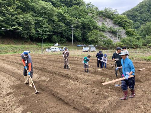 自分たちで有機栽培した大豆を使って麹(こうじ)やみそを作ろうという「水源の里・市志」(森和良代表、10世帯16人)の「市志大豆プロジェクト」が、五泉町市志集落の休耕地で始まった。初回となった6月27日の畝(うね)立て作業には大人13人、子ども6人のボランティアを含めた含めた計24人が参加。2時間半ほどの作業によって、約1300平方㍍の畑で種まきの準備が整った。
