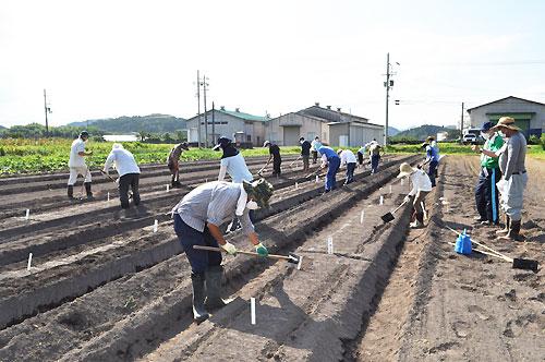 野菜の種まきから収穫までの栽培技術を学びながら就農に必要な知識などが得られる今年度の「就農ステップイン講座」が8月29日から位田町の府立農業大学校で府内外から男女の受講生が参加して始まった。これから11月7日まで計5回、同大学校の教員らから実践的な指導を受ける。